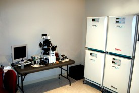 Bluegrass Fertility Center - Lexington, KY IVF Laboratory